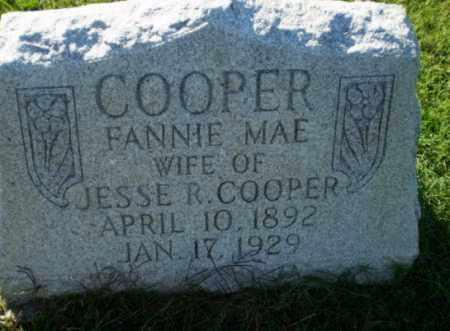 COOPER, FANNIE MAE - Greene County, Arkansas | FANNIE MAE COOPER - Arkansas Gravestone Photos