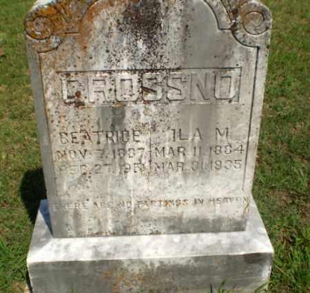 CROSSNO, BEATRICE - Greene County, Arkansas | BEATRICE CROSSNO - Arkansas Gravestone Photos