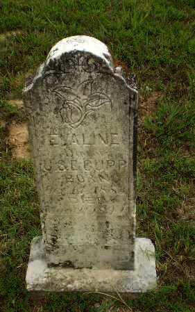 CUPP, EVALINE - Greene County, Arkansas | EVALINE CUPP - Arkansas Gravestone Photos
