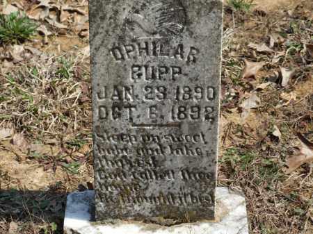 CUPP, OPHILAR - Greene County, Arkansas   OPHILAR CUPP - Arkansas Gravestone Photos