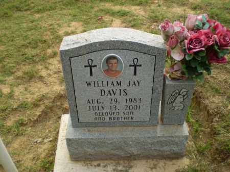 DAVIS, WILLIAM JAY - Greene County, Arkansas   WILLIAM JAY DAVIS - Arkansas Gravestone Photos