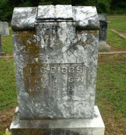 DIGGS, C.C. - Greene County, Arkansas | C.C. DIGGS - Arkansas Gravestone Photos