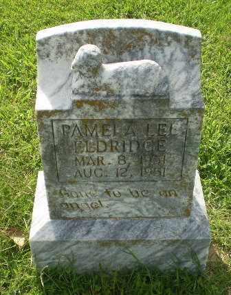 ELDRIDGE, PAMELA LEE - Greene County, Arkansas | PAMELA LEE ELDRIDGE - Arkansas Gravestone Photos