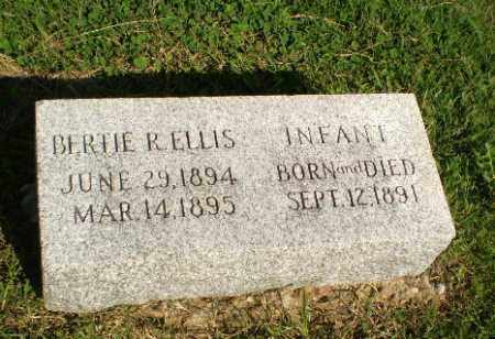 ELLIS, INFANT - Greene County, Arkansas | INFANT ELLIS - Arkansas Gravestone Photos