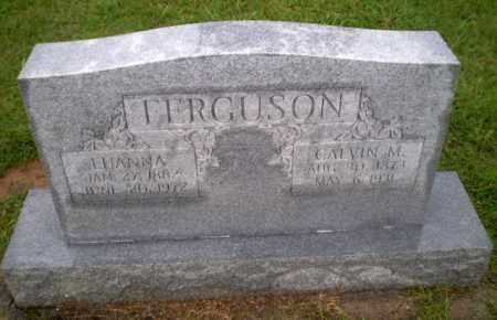 FERGUSON, LUANNA - Greene County, Arkansas | LUANNA FERGUSON - Arkansas Gravestone Photos