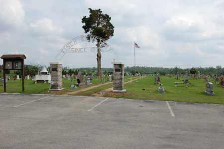 *FINCH CEMETERY, OVERVIEW 1 - Greene County, Arkansas   OVERVIEW 1 *FINCH CEMETERY - Arkansas Gravestone Photos