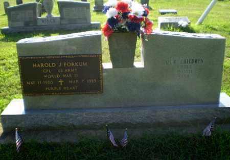 FORKUM  (VETERAN WWII), HAROLD J - Greene County, Arkansas | HAROLD J FORKUM  (VETERAN WWII) - Arkansas Gravestone Photos