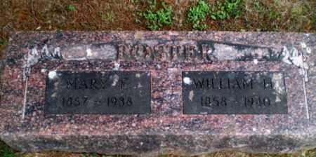 FOSTER, WILLIAM - Greene County, Arkansas | WILLIAM FOSTER - Arkansas Gravestone Photos