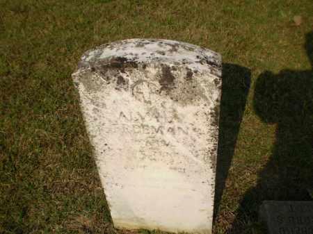 FREEMAN, ALVA - Greene County, Arkansas   ALVA FREEMAN - Arkansas Gravestone Photos