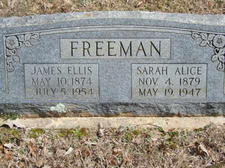 FREEMAN, SARAH ALICE - Greene County, Arkansas | SARAH ALICE FREEMAN - Arkansas Gravestone Photos