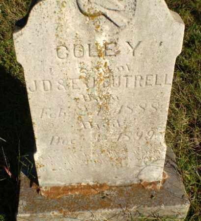 FUTRELL, COLE Y - Greene County, Arkansas | COLE Y FUTRELL - Arkansas Gravestone Photos
