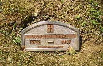 HANEL, ALOYSIAM - Greene County, Arkansas | ALOYSIAM HANEL - Arkansas Gravestone Photos