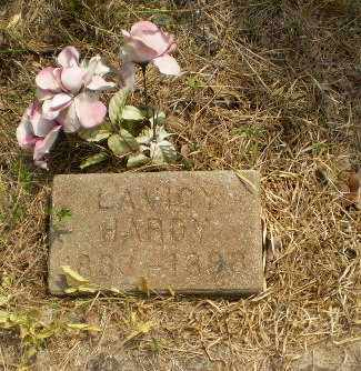 HARDY, LAVICY - Greene County, Arkansas | LAVICY HARDY - Arkansas Gravestone Photos