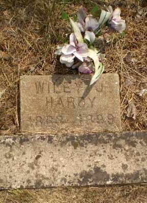 HARDY, WILEY J - Greene County, Arkansas | WILEY J HARDY - Arkansas Gravestone Photos