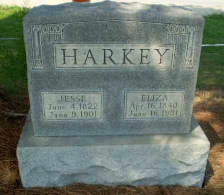 HARKEY, JESSE - Greene County, Arkansas | JESSE HARKEY - Arkansas Gravestone Photos