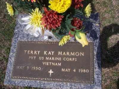 HARMON, TERRY KAY - Greene County, Arkansas | TERRY KAY HARMON - Arkansas Gravestone Photos
