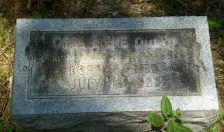 HARRIS, OPEL IRENE - Greene County, Arkansas | OPEL IRENE HARRIS - Arkansas Gravestone Photos