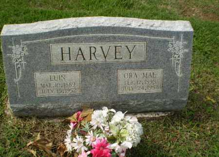 HARVEY, LUIN - Greene County, Arkansas | LUIN HARVEY - Arkansas Gravestone Photos