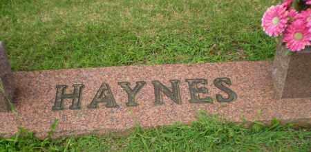 HAYNES FAMILY STONE,  - Greene County, Arkansas |  HAYNES FAMILY STONE - Arkansas Gravestone Photos