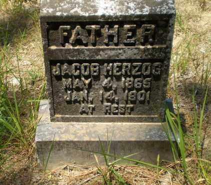 HERZOG, JACOB - Greene County, Arkansas | JACOB HERZOG - Arkansas Gravestone Photos