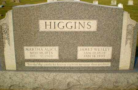 HIGGINS, JAMES WESLEY - Greene County, Arkansas | JAMES WESLEY HIGGINS - Arkansas Gravestone Photos