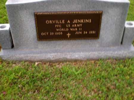 JENKINS  (VETERAN WWII), ORVILLE A. - Greene County, Arkansas | ORVILLE A. JENKINS  (VETERAN WWII) - Arkansas Gravestone Photos