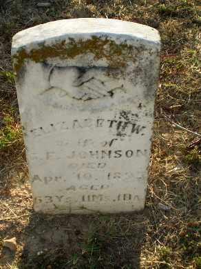 JOHNSON, ELIZABETH W - Greene County, Arkansas | ELIZABETH W JOHNSON - Arkansas Gravestone Photos