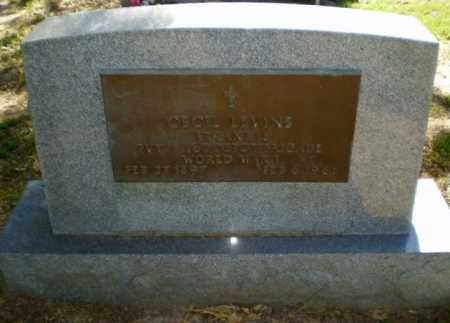 LEVINS, JOHNIE E - Greene County, Arkansas | JOHNIE E LEVINS - Arkansas Gravestone Photos