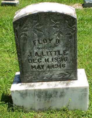 LITTLE, FLOY D - Greene County, Arkansas | FLOY D LITTLE - Arkansas Gravestone Photos