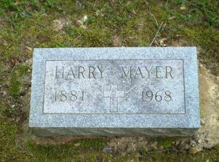 MAYER, HARRY - Greene County, Arkansas | HARRY MAYER - Arkansas Gravestone Photos