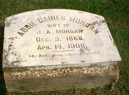 GAINES MORGAN, ABBIE - Greene County, Arkansas | ABBIE GAINES MORGAN - Arkansas Gravestone Photos