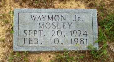MOSLEY, JR, WAYMON - Greene County, Arkansas | WAYMON MOSLEY, JR - Arkansas Gravestone Photos