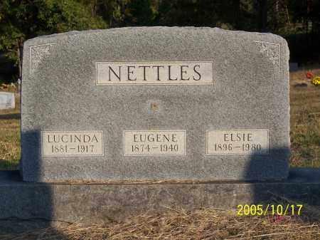 CUNNINGHAM NETTLES, ELSIE - Greene County, Arkansas | ELSIE CUNNINGHAM NETTLES - Arkansas Gravestone Photos