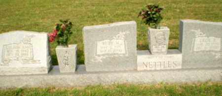 NETTLES, CECIL E - Greene County, Arkansas | CECIL E NETTLES - Arkansas Gravestone Photos