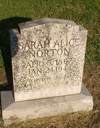 NORTON, SARAH ALICE - Greene County, Arkansas   SARAH ALICE NORTON - Arkansas Gravestone Photos