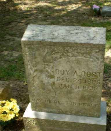 OOST, ROY A - Greene County, Arkansas | ROY A OOST - Arkansas Gravestone Photos
