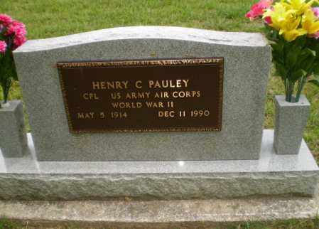 PAULEY  (VETERAN WWII), HENRY C - Greene County, Arkansas | HENRY C PAULEY  (VETERAN WWII) - Arkansas Gravestone Photos
