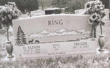 RING, D. ELDON - Greene County, Arkansas | D. ELDON RING - Arkansas Gravestone Photos