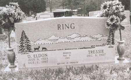 RING, D. ELDON - Greene County, Arkansas | D. ELDON RING - Arkansas Gravestone Photos