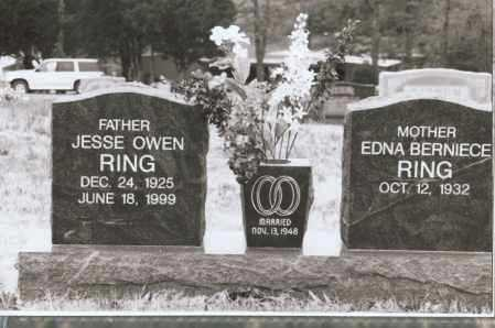 RING, REV, JESSE OWEN - Greene County, Arkansas | JESSE OWEN RING, REV - Arkansas Gravestone Photos