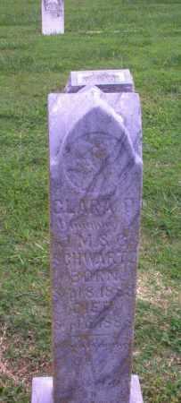 SCHWARTZ, CLARA O (INFANT) - Greene County, Arkansas | CLARA O (INFANT) SCHWARTZ - Arkansas Gravestone Photos