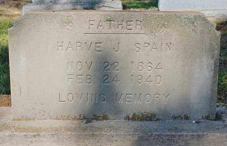 SPAIN, HARVE J. - Greene County, Arkansas | HARVE J. SPAIN - Arkansas Gravestone Photos