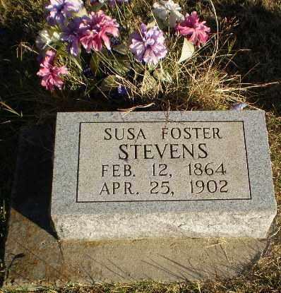 FOSTER STEVENS, SUSA - Greene County, Arkansas | SUSA FOSTER STEVENS - Arkansas Gravestone Photos