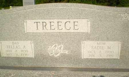 TREECE, SADIE M - Greene County, Arkansas | SADIE M TREECE - Arkansas Gravestone Photos
