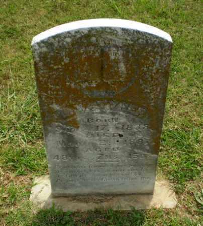 TYNER, L.W. - Greene County, Arkansas | L.W. TYNER - Arkansas Gravestone Photos