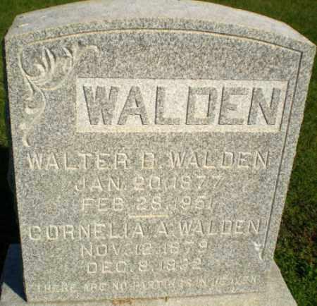 WALDEN, CORNELIA A - Greene County, Arkansas | CORNELIA A WALDEN - Arkansas Gravestone Photos