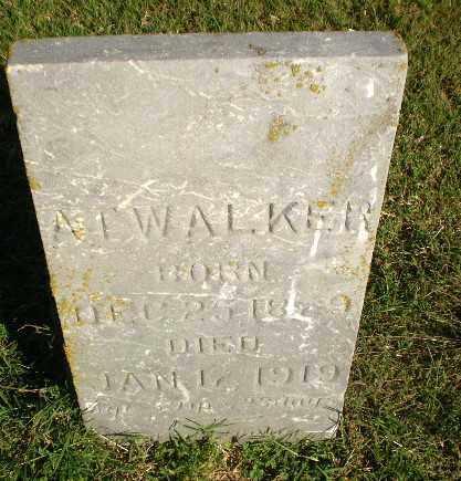 WALKER, A.T. - Greene County, Arkansas | A.T. WALKER - Arkansas Gravestone Photos