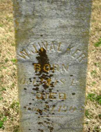 WALKER, W.J. - Greene County, Arkansas | W.J. WALKER - Arkansas Gravestone Photos