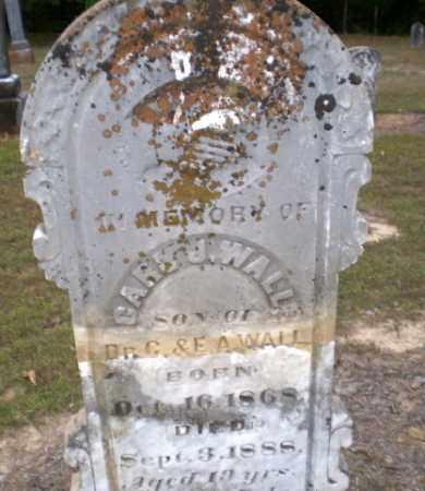 WALL, CARL J - Greene County, Arkansas | CARL J WALL - Arkansas Gravestone Photos