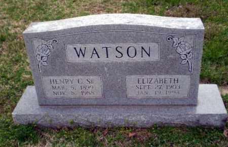 WATSON, ELIZABETH - Greene County, Arkansas   ELIZABETH WATSON - Arkansas Gravestone Photos